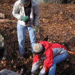A new connecting trail was built in Saxon Woods on December 3, 2005, to bring it closer the the Leatherstocking